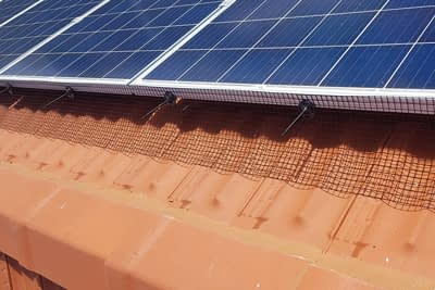 Solar Panels Bird Proofing